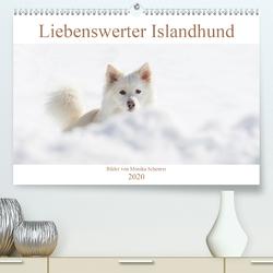 Liebenswerter Islandhund (Premium, hochwertiger DIN A2 Wandkalender 2020, Kunstdruck in Hochglanz) von Scheurer,  Monika