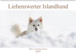 Liebenswerter Islandhund (Wandkalender 2019 DIN A2 quer) von Scheurer,  Monika