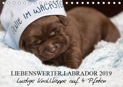 Liebenswerter Labrador 2019 (Tischkalender 2019 DIN A5 quer) von Annett Mirsberger,  tierpfoto.de