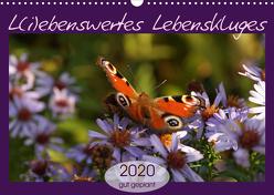 L(i)ebenswertes Lebenskluges (Wandkalender 2020 DIN A3 quer) von Flori0