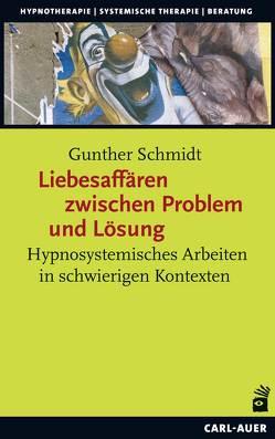 Liebesaffären zwischen Problem und Lösung von Schmidt,  Gunther