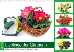 Lieblinge der Gärtnerin – Balkon und Gartenblumen für das ganze Jahr (Wandkalender 2020 DIN A3 quer) von N.,  N.