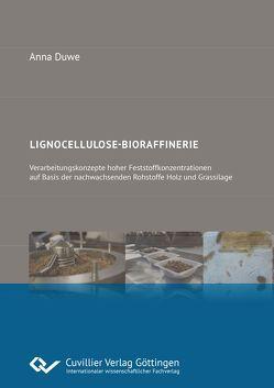 Lignocellulose-Bioraffinerie von Duwe,  Anna