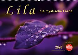 Lila – die mystische Farbe (Wandkalender 2020 DIN A2 quer) von Roder,  Peter