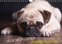 Lillie Mopsgetier – mopsfidel durchs Jahr (Wandkalender 2019 DIN A4 quer) von Raab,  Martina