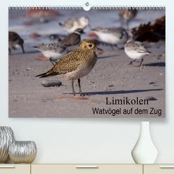 Limikolen Watvögel auf dem Zug (Premium, hochwertiger DIN A2 Wandkalender 2020, Kunstdruck in Hochglanz) von Erlwein,  Winfried