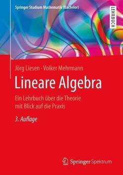 Lineare Algebra von Liesen,  Jörg, Mehrmann,  Volker