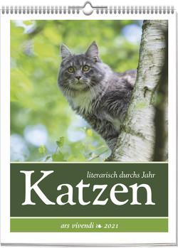 Katzen – literarisch durchs Jahr 2021
