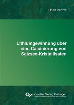 Lithiumgewinnung über eine Calcinierung von Salzsee-Kristallisaten von Protze,  Dorit