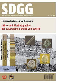 Litho- und Biostratigraphie der außeralpinen Kreide von Bayern von Niebuhr,  Birgit