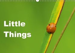 Little Things (Wandkalender 2018 DIN A3 quer) von Tickell,  David