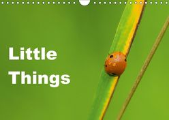 Little Things (Wandkalender 2018 DIN A4 quer) von Tickell,  David