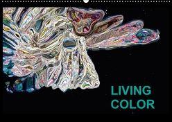 Living Color (Wandkalender 2018 DIN A2 quer) von Wand,  Jörg