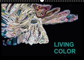 Living Color (Wandkalender 2018 DIN A3 quer) von Wand,  Jörg