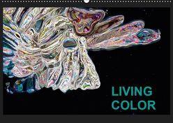 Living Color (Wandkalender 2019 DIN A2 quer) von Wand,  Jörg