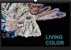 Living Color (Wandkalender 2019 DIN A3 quer) von Wand,  Jörg