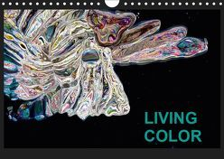 Living Color (Wandkalender 2019 DIN A4 quer) von Wand,  Jörg