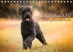 Lockenwölfe – Energiebündel Pudel (Tischkalender 2019 DIN A5 quer) von Hollstein,  Alexandra