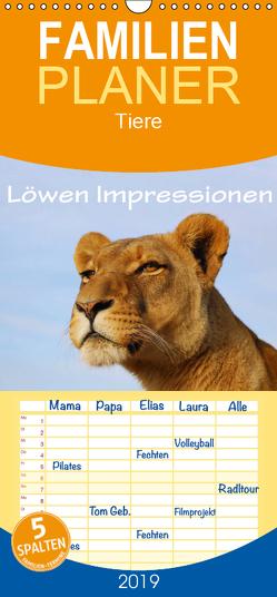 Löwen Impressionen – Familienplaner hoch (Wandkalender 2019 , 21 cm x 45 cm, hoch) von van Wyk,  Anke