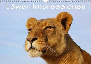 Löwen Impressionen (Wandkalender 2018 DIN A3 quer) von van Wyk,  Anke