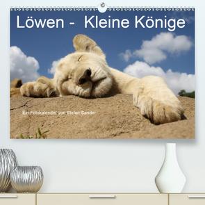 Löwen – Kleine Könige (Premium, hochwertiger DIN A2 Wandkalender 2021, Kunstdruck in Hochglanz) von Sander,  Stefan
