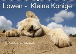 Löwen – Kleine Könige (Wandkalender 2019 DIN A2 quer) von Sander,  Stefan