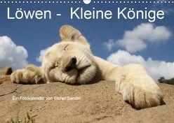 Löwen – Kleine Könige (Wandkalender 2019 DIN A3 quer) von Sander,  Stefan