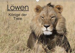 Löwen – Könige der Tiere (Wandkalender 2019 DIN A3 quer) von Sander,  Stefan