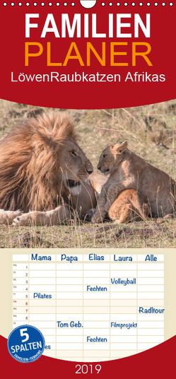 Löwen – Raubkatzen Afrikas – Familienplaner hoch (Wandkalender 2019 , 21 cm x 45 cm, hoch) von Lippmann,  Andreas