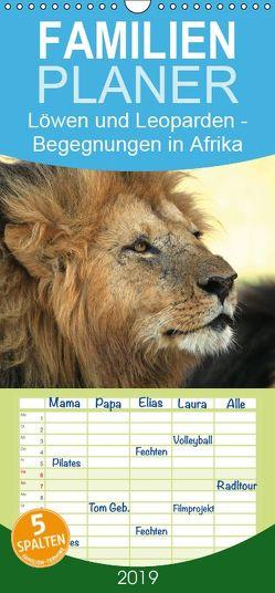 Löwen und Leoparden – Begegnungen in Afrika – Familienplaner hoch (Wandkalender 2019 , 21 cm x 45 cm, hoch) von Herzog,  Michael