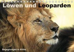 Löwen und Leoparden – Begegnungen in Afrika (Tischkalender 2018 DIN A5 quer) von Herzog,  Michael