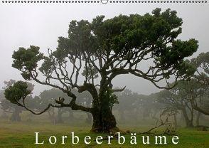 Lorbeerbäume (Wandkalender 2016 DIN A2 quer) von Lielischkies,  Klaus