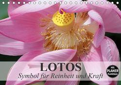 Lotos. Symbol für Reinheit und Kraft (Tischkalender 2019 DIN A5 quer) von Stanzer,  Elisabeth