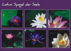 Lotus – Spiegel der Seele von Hendricks,  Helga, Lehmacher,  Jürgen