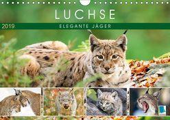 Luchse: Elegante Jäger (Wandkalender 2019 DIN A4 quer) von CALVENDO