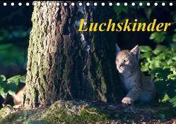 Luchskinder (Tischkalender 2019 DIN A5 quer) von Martin,  Wilfried