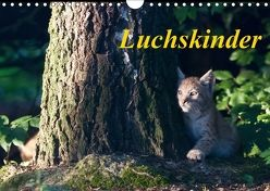 Luchskinder (Wandkalender 2018 DIN A4 quer) von Martin,  Wilfried