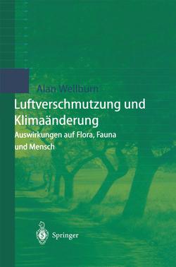 Luftverschmutzung und Klimaänderung von Gramm,  U., Mennecke-Bühler,  D., Wellburn,  Alan R.