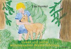 Lukas und seine wundersamen Walderlebnisse von Henkel,  Ilse