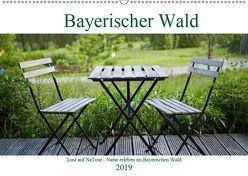 Lust auf NaTour – Bayerischer Wald (Wandkalender 2019 DIN A2 quer) von Riedmiller,  Andreas