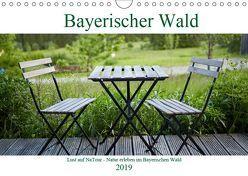 Lust auf NaTour – Bayerischer Wald (Wandkalender 2019 DIN A4 quer) von Riedmiller,  Andreas