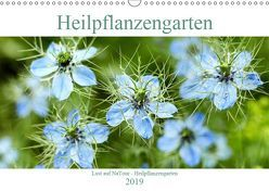 Lust auf NaTour – Heilpflanzengarten (Wandkalender 2019 DIN A3 quer) von Riedmiller,  Andreas