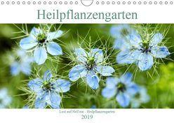 Lust auf NaTour – Heilpflanzengarten (Wandkalender 2019 DIN A4 quer) von Riedmiller,  Andreas
