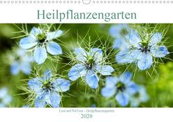 Lust auf NaTour – Heilpflanzengarten (Wandkalender 2020 DIN A3 quer) von Riedmiller,  Andreas