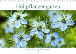 Lust auf NaTour – Heilpflanzengarten (Wandkalender 2021 DIN A3 quer) von Riedmiller,  Andreas