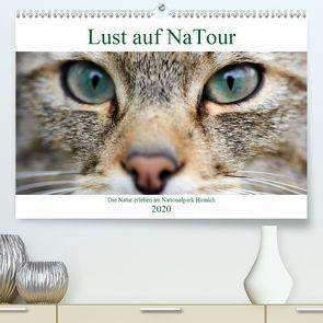 Lust auf NaTour – Nationalpark Hainich (Premium, hochwertiger DIN A2 Wandkalender 2020, Kunstdruck in Hochglanz) von Riedmiller,  Andreas