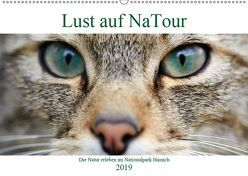 Lust auf NaTour – Nationalpark Hainich (Wandkalender 2019 DIN A2 quer) von Riedmiller,  Andreas