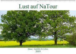 Lust auf NaTour – Bäume (Wandkalender 2019 DIN A2 quer) von Riedmiller,  Andreas
