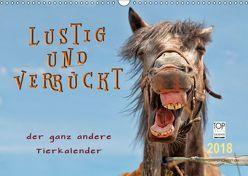 Lustig und verrückt – der ganz andere Tierkalender (Wandkalender 2018 DIN A3 quer) von Roder,  Peter