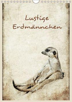 Lustige Erdmännchen (Wandkalender 2018 DIN A4 hoch) von Hultsch,  Heike